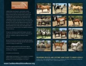thumbnail_castleton-ranch-2017-back-cover